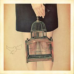 with a bird cage?