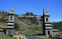 WISATA, Kawasan Wisata Dieng Plateau - DIENG nama Dieng semakin populer saja. Dengan dataran tinggi yang populer dengan nama Dieng Plateau ini memang menawarkan keindahan alam dan dinginnya hawa pegunungan. Dieng Plateu Travel, Bagi anda yang menyukai wisata pegunungan, cobalah mengunjungi dataran tinggi ini.