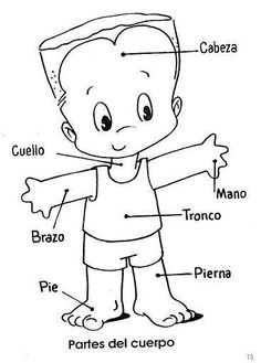 Preschool - Primary School Worksheets The Human Body Parts in Spanish. Human Body in Spanish printable worksheets designed for preschool and primary school children.13 #learnspanishforadultstips #spanishforpreschoolers