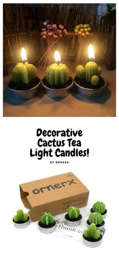Tiny Cactus Candles. How cute are these!!