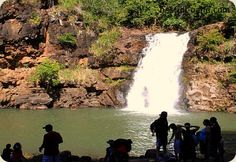 Waimea Falls Park - For Oahu hikes, this is more like a pleasurable one mile stroll through lush botanical gardens, that lead up to the grand Waimea Falls. Still known as the popular Waimea Falls Park, this Oahu waterfall and grounds are now run by the stewards of Waimea Valley Hi'ipaka.