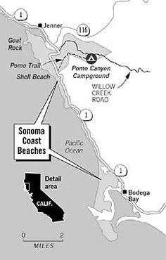 Pomo Canyon