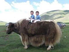 The Eyes of Children around the World Mongolia. Unknown author.