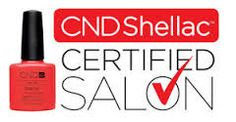 Image result for cnd shellac brochure