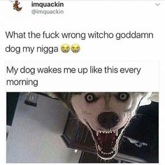 The devil. Follow us @i.smolar Tag a friend! (Credit: @9gag ) #ismolar #lol #meme #funny #fun #meme #memesdaily #memesdaily #memecreator #9gag #dank #dankmeme #hilarious #2017 #haha #wrecked #nochill #happy #comic #comedy #fail #dog #wakemeupinside #devil #wrong