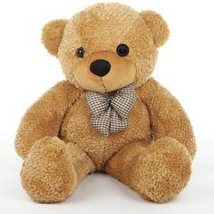 Teddy Bear with Hidden GoPro