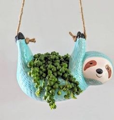 Succulent Diy Gifts Flower Pots Ideas For 2019 Hanging Succulents, Succulent Pots, Succulents Diy, Plant Pots, Clay Projects, Projects To Try, Diy And Crafts, Kids Crafts, Decoration Plante
