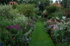 Welcome to Stone House Cottage Nursery, specialising in wall shrubs, climbers and lesser grown herbaceous plant, with an exquisite garden with towers. Cottage Nursery, Garden Nursery, Plant Nursery, English Gardens, Shrubs, Tower, Plants, House, English Country Gardens