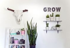 """love that little """"GROW"""" corner. would be great for the living room or maybe the kitchen by a window!"""