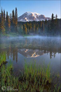 Reflection Lake Sunrise Mt Rainier, Washington