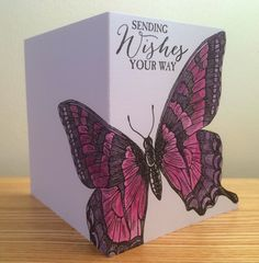 Hello bloggers! I've used the fabulous extra large stamp 'Swallowtail' from Stampin' Up to make this card. I stamped the butterfly in Arch...