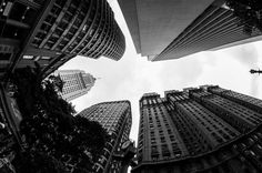 #black and white #buildings #city #looking up #skyscrapers #streets #wide angle