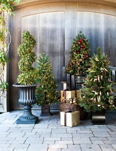 Potted Trees Make Stunning Accents To Entryways And Porches Topiaries Outdoor Christmas Tree Decorations