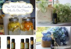 How We Use Essential Oils In Our Home - Denise In Bloom