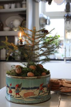 Place an evergreen branch in a vintage cookie tin for an impromptu table top tree.