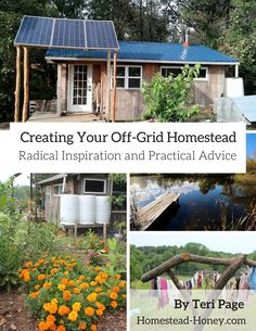 In Teri Page's eBook, Creating Your Off-Grid Homestead: Radical Inspiration and Practical Advice, you'll be both challenged and inspired.