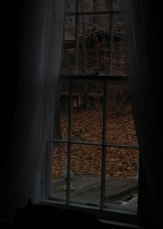 aesthetic, autumn, and Halloween image Dark Autumn, Autumn Cozy, Autumn Rain, Autumn Leaves, Autumn Aesthetic, Brown Aesthetic, Paz Hippie, Images Terrifiantes, Southern Gothic