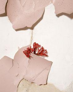 unetdemi:    Bloom magazine- Lidewij Edelkoort