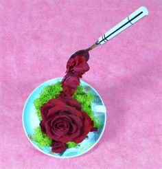 composition-florale-cappuccino-de-rose-eternelle-stabilisee-tasse
