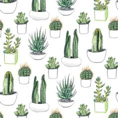 Watercolour Cacti and Succulents fabric by crumpetsandcrabsticks on Spoonflower…