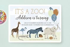 Zoo Animals Children's Birthday Party Invitations by Beth Schneider at minted.com