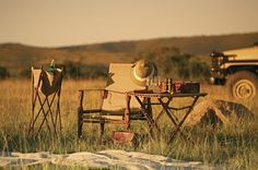 MM Design Associates: LUXURY SAFARI CHIC