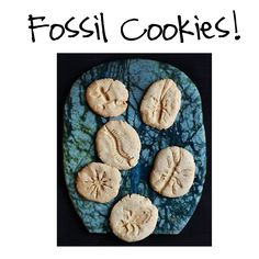 Fossil cookies  Kid's birthday party idea  mrs. prince & co.: January 2012