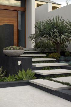 Love love LOVE this!!! Branksome   Tim Davies Landscaping Contemporary Landscape Design Succulent plants