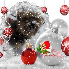 Merry Christmas it's snowing Christmas Bulbs, Merry Christmas, It's Snowing, Create, Holiday Decor, Christmas Light Bulbs, Christmas Stuff, Merry Little Christmas, Wish You Merry Christmas