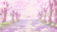 please watch monster : Photo Anime Cherry Blossom, Anime Scenery, Images, Sidewalk, Fantasy, Outdoor, Backgrounds, Trees, Collections