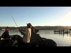 Monday Night Striper Fishin' - Benicia