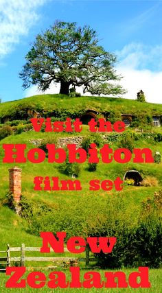 The Hobbiton Film Set is an absolute must do when travelling in New Zealand. It's the actual set they built in the Waikato region to make both the Lord of the Rings and the Hobbit trilogies and it is gorgeous. You can even have a drink at the Green Dragon pub! Even if you are not a Tolkien fan this is fun! http://www.worldwanderingkiwi.com/2012/11/new-zealand-visit-the-hobbiton-film-set/