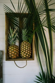 Mariage theme tropical #mariage #wedding #tropical #ananas #plante