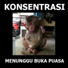 Gambar Meme DP BBM Menungu Buka Puasa Lucu Gokil 2017 2018 2019 2020 2021 2022 2023 2024 2025 Funny Memes, Jokes, Keep Smiling, Laughter, Haha, Humor, Cute, Smile, Group