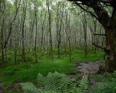 Glendalough National Park, Ireland