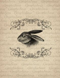 Easter Rabbit in Baroque Frame - Bunny - Hare - Printable Graphics Digital Collage Sheet Image Download Transfer An96. $1.00, via Etsy.