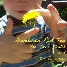 Dandelion root tea as a simple gentle liver and gallbladder support/cleanse