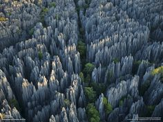 Tsingy de Bemaraha Nature Reserve, Madagascar [Reserva Natural de Tsingy de Bemaraha]