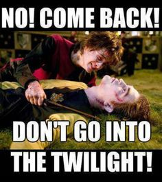 Harry Potter vs. Twilight .... NO COME BACK DONT GO INTO THE TWILIGHT... LOLOLOLOL