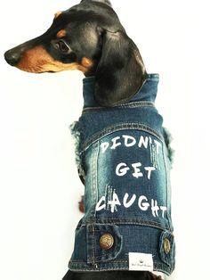 Perros peque/ños y Gatos para Viajes al Aire Libre con dise/ño de Bolsa y Bolso Precauti Bolso Suave y Bolsa Reversible para Mascotas sin Manos Adecuado para Cachorros