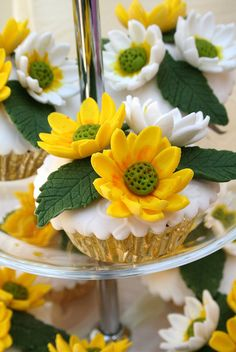 Daisies... by Anita Jamal, via Flickr