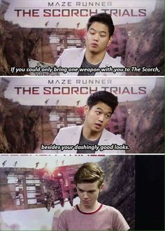 I'd bring 20 daggers. Maze Runner Funny, Maze Runner The Scorch, Maze Runner Cast, Maze Runner Movie, Maze Runner Trilogy, Maze Runner Series, The Scorch Trials, Memes, Thomas Brodie Sangster