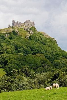 Carreg Cennen castle in Wales 12 dancing princesses Welsh Castles, Castles In Wales, Wales Castle, Wales Uk, South Wales, Best Of Wales, Carreg Cennen Castle, The Places Youll Go, Places To Visit