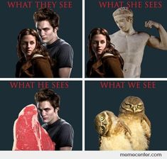Twilight - What we see - funny pictures - funny photos - funny images - funny pics - funny quotes - funny animals @ humor Twilight Harry Potter, Film Twilight, Twilight Jokes, Twilight Saga Series, Twilight Parody, Twilight Saga Quotes, Memes Humor, Funny Jokes, Hilarious