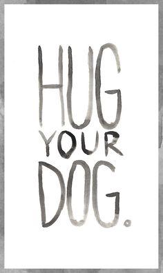 Most of us can't hug our dogs enough!