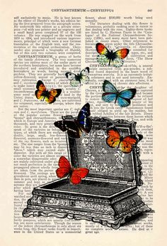 "The butterfly...to me a sign of my Lord! Like me, their life began ugly, but God grants a new life of beauty when we are ""born again!"" As is the same with the beautiful butterfly!"
