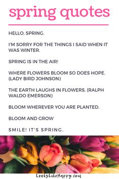 Spring Quotes | Perfect for letter boards & chalkboards, these spring quotes are the perfect way to welcome spring.  #spring #springquotes