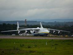 Avião veio dos Estados Unidos direto para Campinas (Foto: Roberta Steganha/ G1)