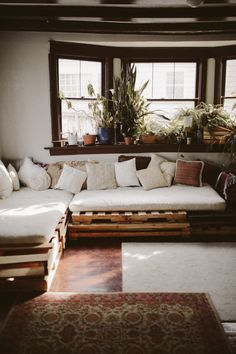 Beautiful sunlit living room complete with a crate couch and window sill greenery.