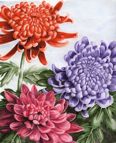 watercolor paintings of chrysanthemums | chrysanthemums by russiawantsvodka traditional art paintings still ...